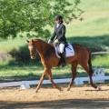 Camelot Horse Trials