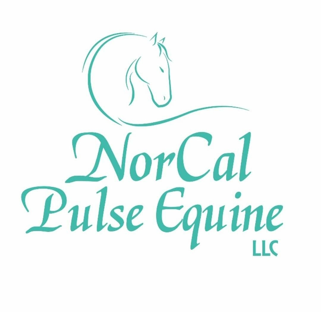 NorCal Pulse Equine